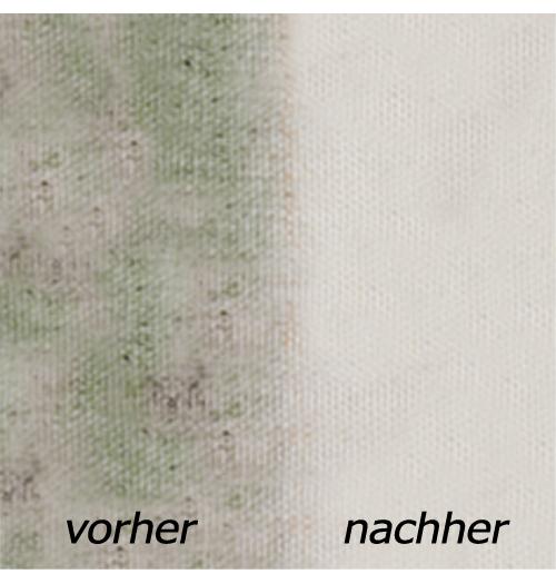 Schimmel- und Stockflecken Reiniger / MSR Black Stain Remover
